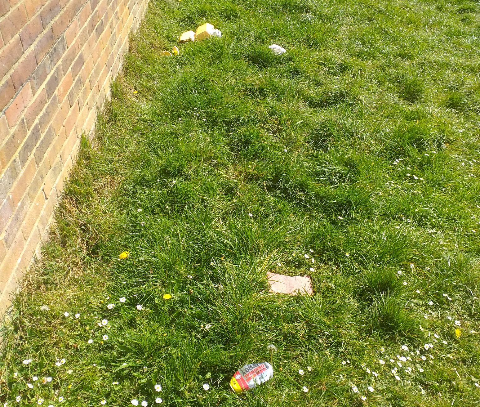 A repeat litter spot on Earlswood Common
