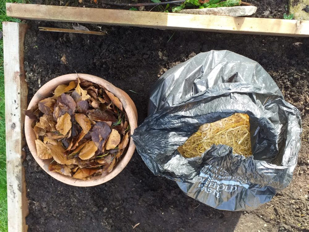 Leaves and guinea pig waste